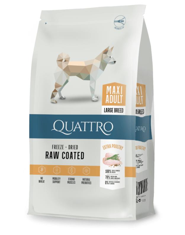 QUATTRO Maxi Adult su paukštiena sausas didelių veislių šunų pašaras, 12kg